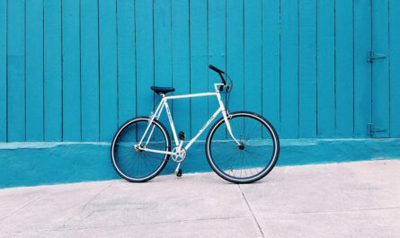 Silniční bike patří mezi obvyklé typy jízdních kol.